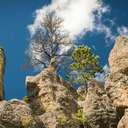 Needles Highway - SD
