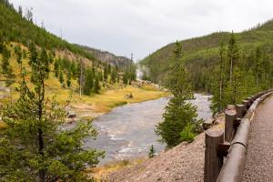Gibbon River - Yellowstone NP