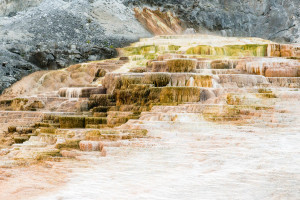 Lower Terraces - Mammoth Hot Springs - Yellowstone NP