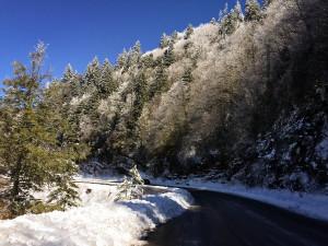 Great Smoky Mountains NP