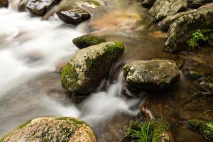 Little River - GSMNP, TN