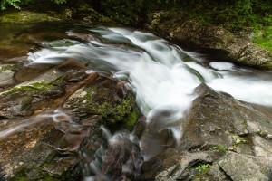 Laurel Creek - GSMNP, TN