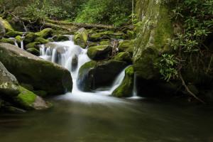 Roaring Fork Trail - GSMNP, TN