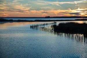 Blackwater National Wildlife Refuge, MD